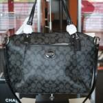 Coach Peyton Women's Signature Pocket Tote Handbag Bag | Buy it for life (BIFL)