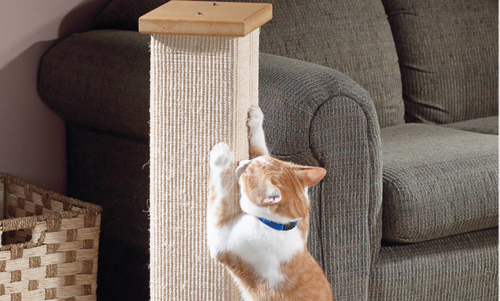 SmartCat Ultimate scratching post - Buy it for life (BIFL)