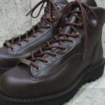 BIFL boots | Danner Explorer boots