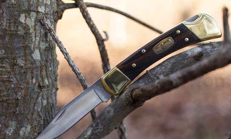 One of the best pocket knives: Buck 110 Folding Hunter Knife