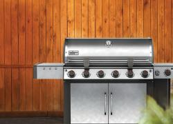 Best quality propane barbecue | Weber Genesis II