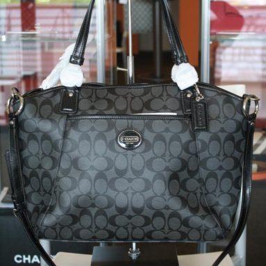 Coach Peyton Women's Signature Pocket Tote Handbag